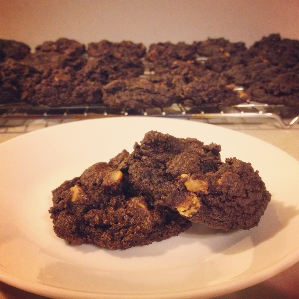 Gluten Free Chewy Chocolate Peanut Butter Cookies