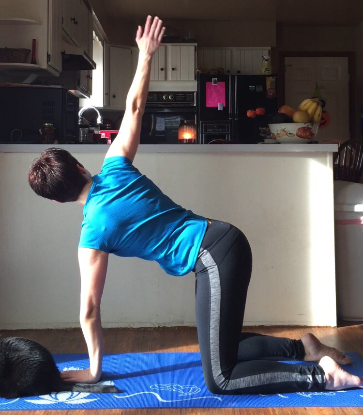 This was another lovely stretch for opening up the upper back. After all the pain of the last few days, I was holding quite a bit of tension there.