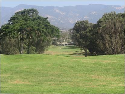 golf scene 1.jpg