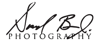 SB - Logo.png