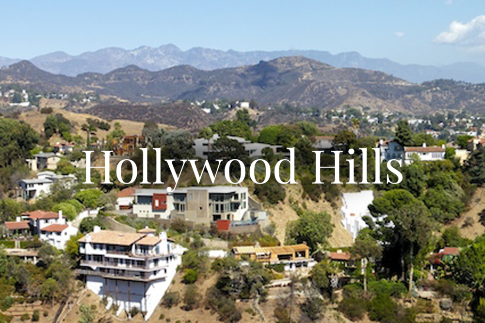 hollywood_hills.png