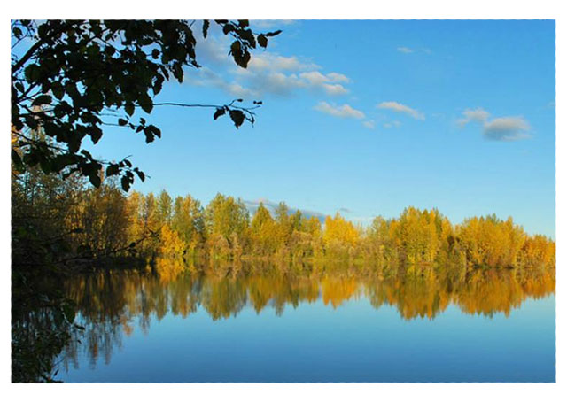 Beautiful Moose Lake - Eielson AFB, Alaska