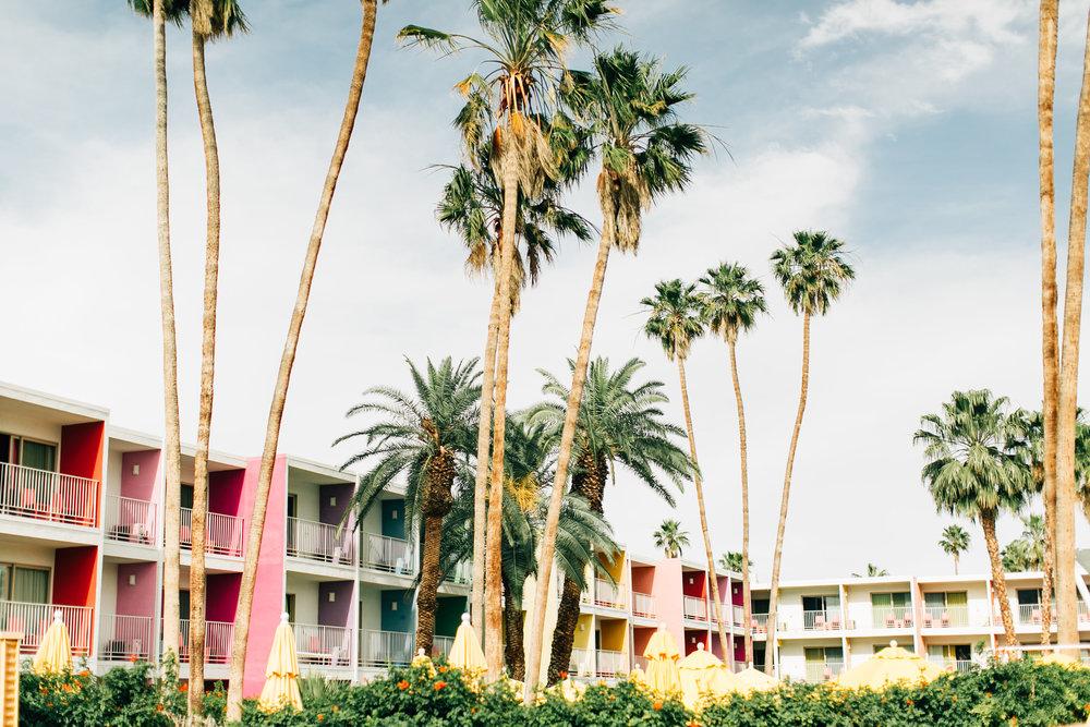 the saguro palm springs
