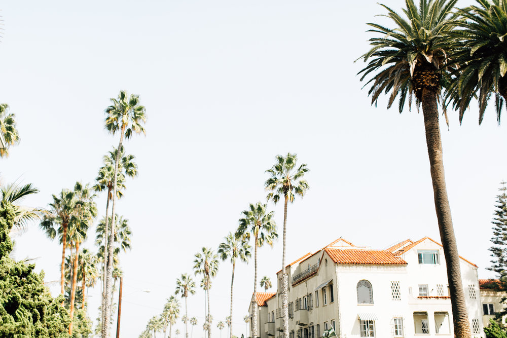 palihouse hotel /// freckles on fillmore