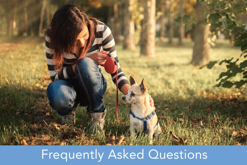 FAQ v8.jpg
