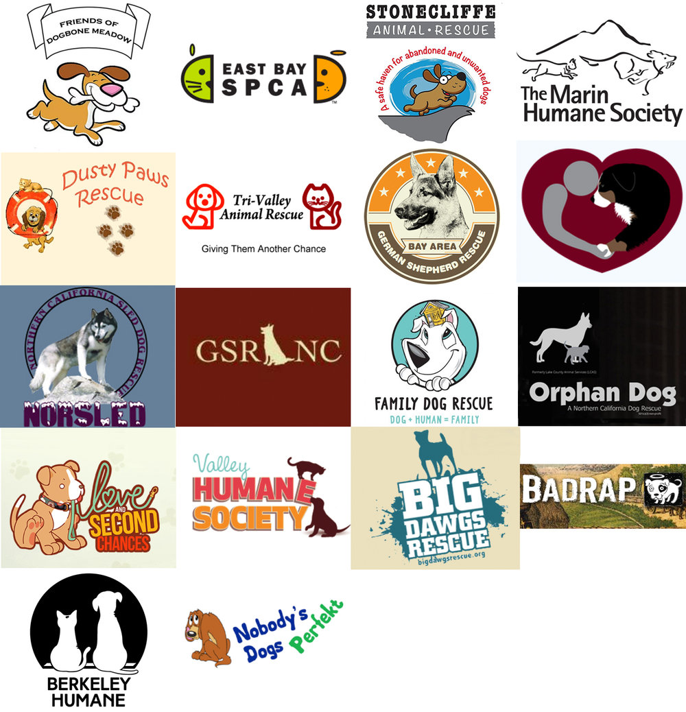 Donated rescues-9.jpg