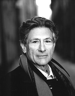 mei middle eat institute edward said.jpg