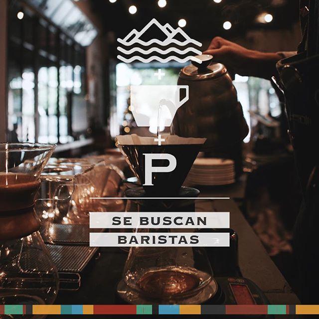 Estamos creciendo y necesitamos profesionales que amen el café y quieran llevarlo a otro nivel. #baristaswelcome #estamosbuscando #mandatucv #baristasprofesionales #competiciones admin@paradigmacoffee.com