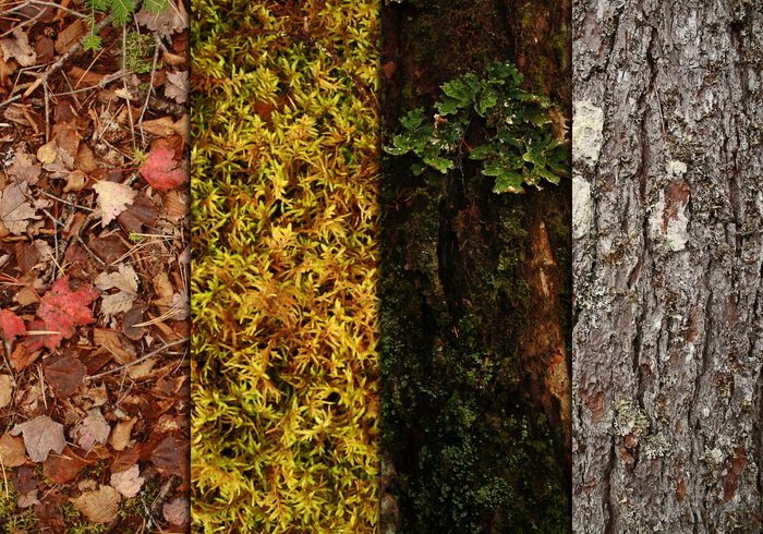 pack-natural-textures-1.jpg