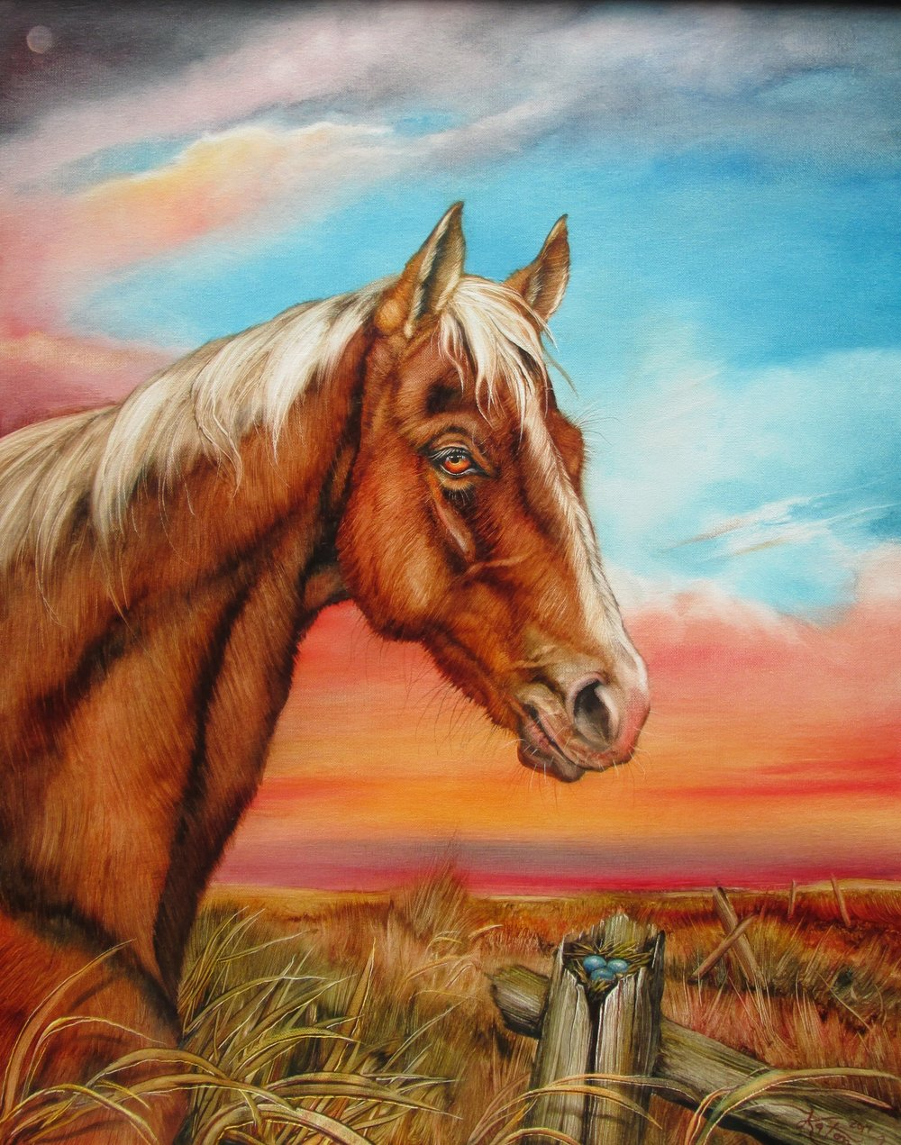 Horse and Friend.JPG