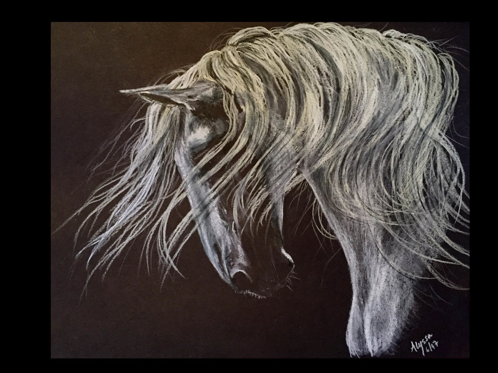 Horse - White pencil on back paper 8.5 x 11-2.JPG
