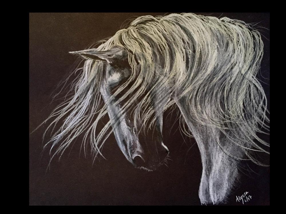 Horse - White pencil on back paper 8.5 x 11-2.JPG