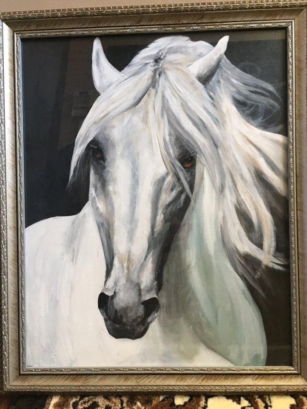 Arabian Horse 16 x 20-2.JPG