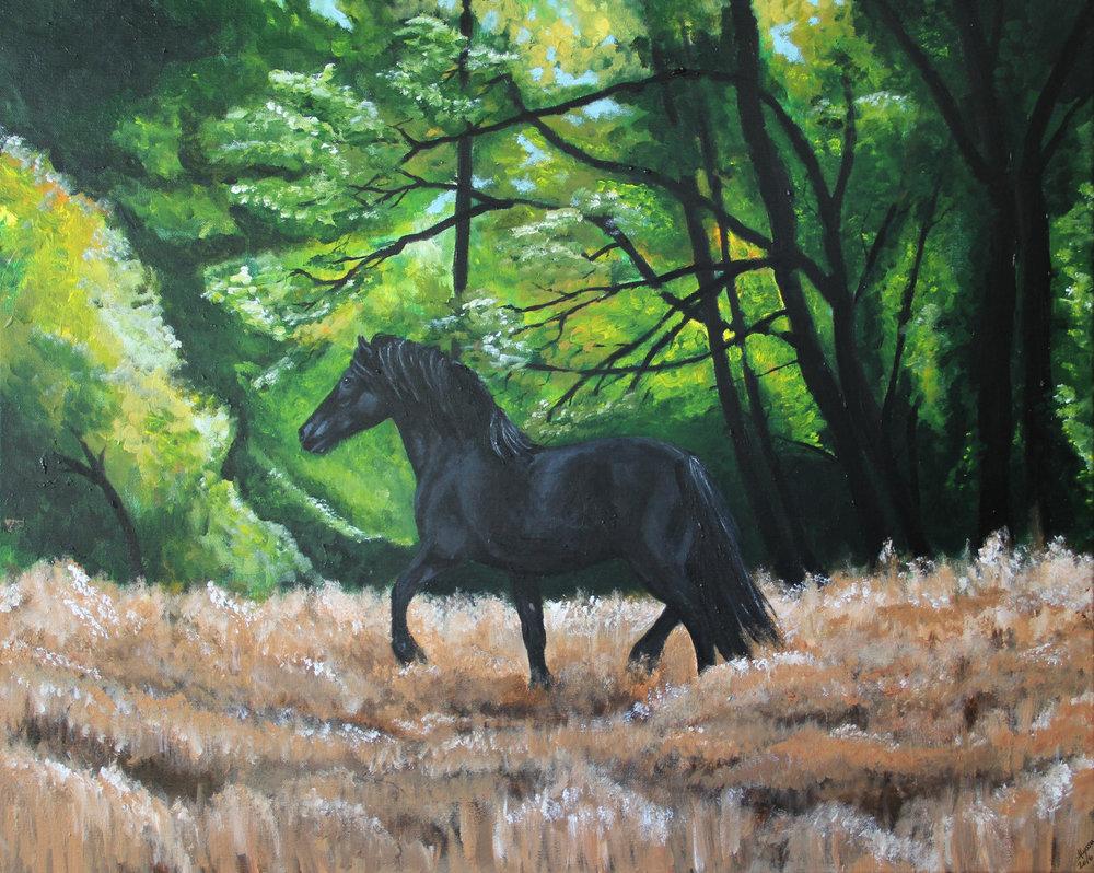 Horse in Field 24 x 30-3.jpg