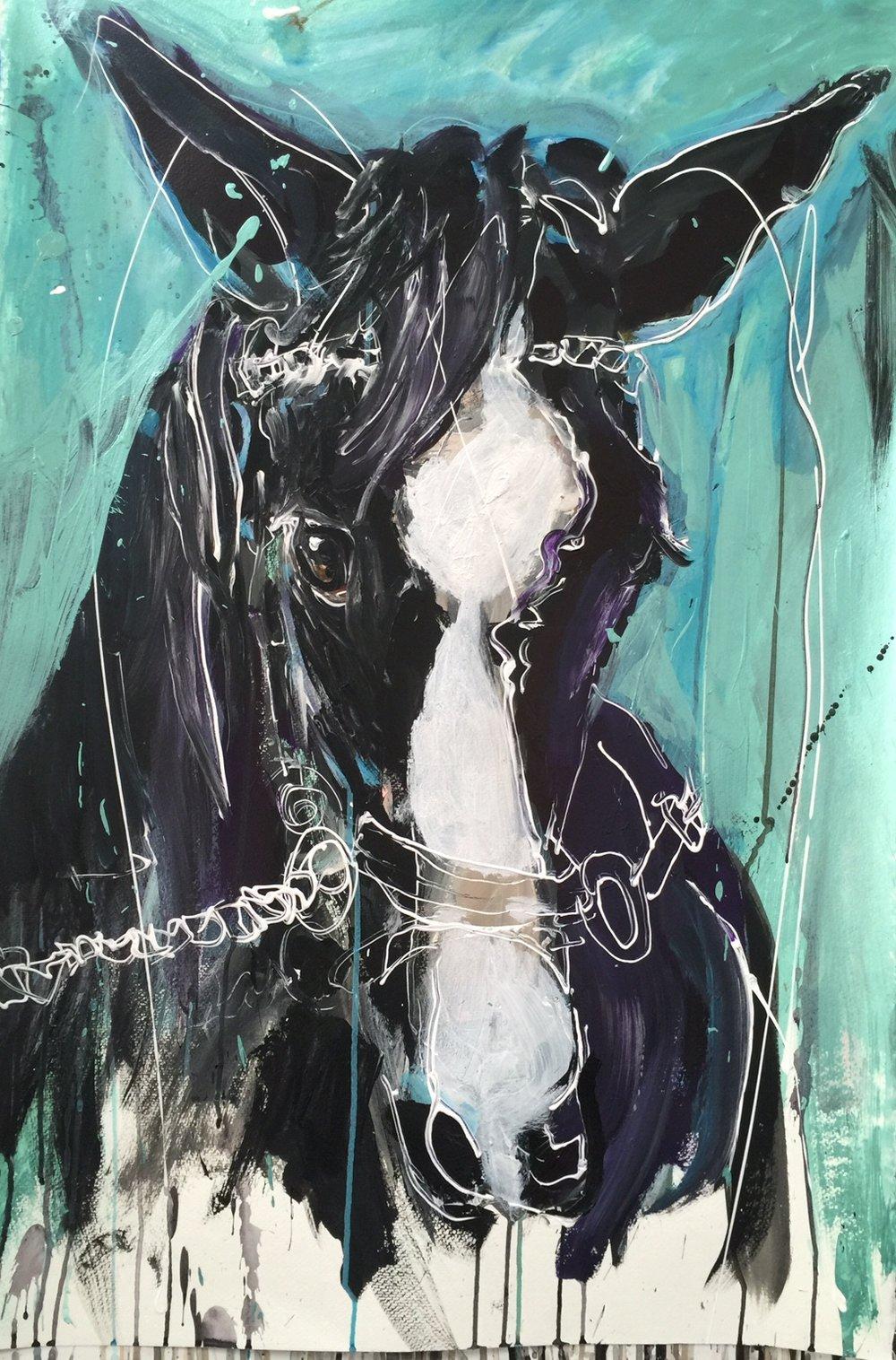 Julie Arnoff Horse 1.jpg