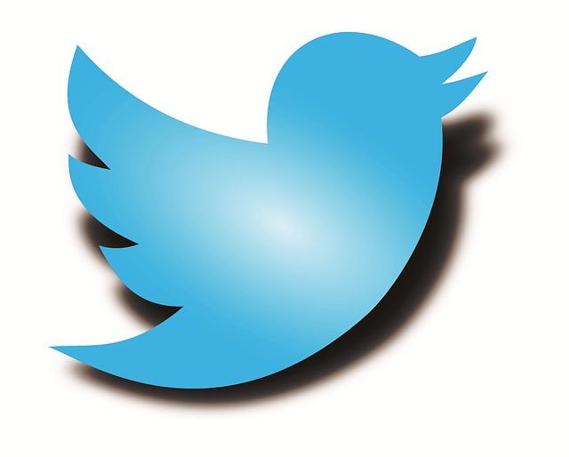 Twitter Logo for Businesses