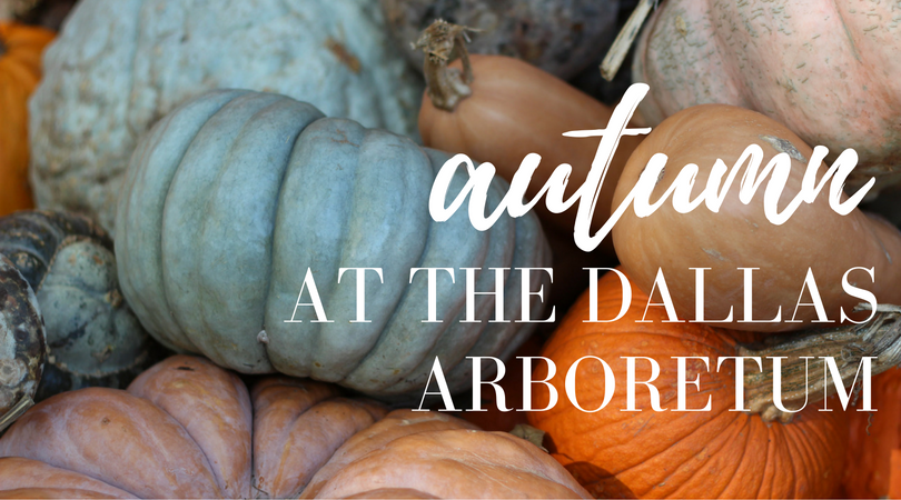dallas fall events