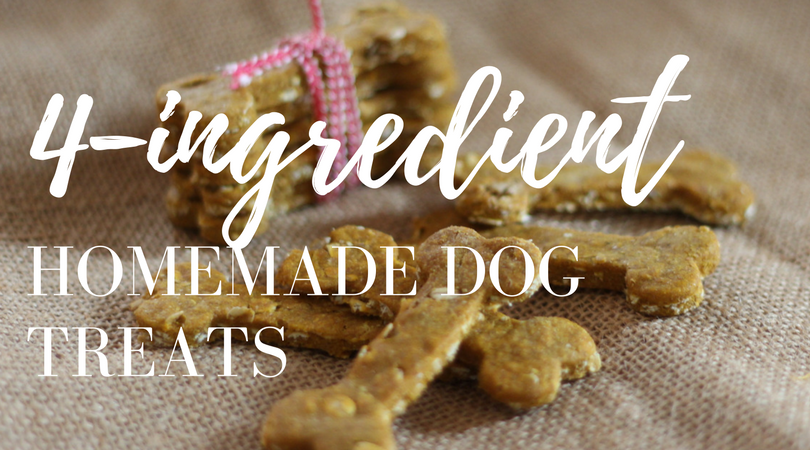 4 ingredient simple homemade dog treats