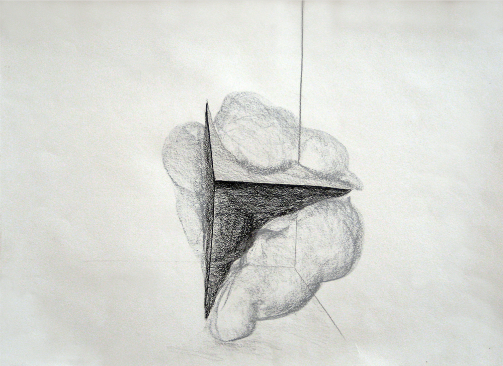 untitled, 2010, graphite on paper