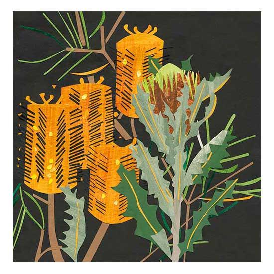 Hairpin-BanksiaSm.jpg