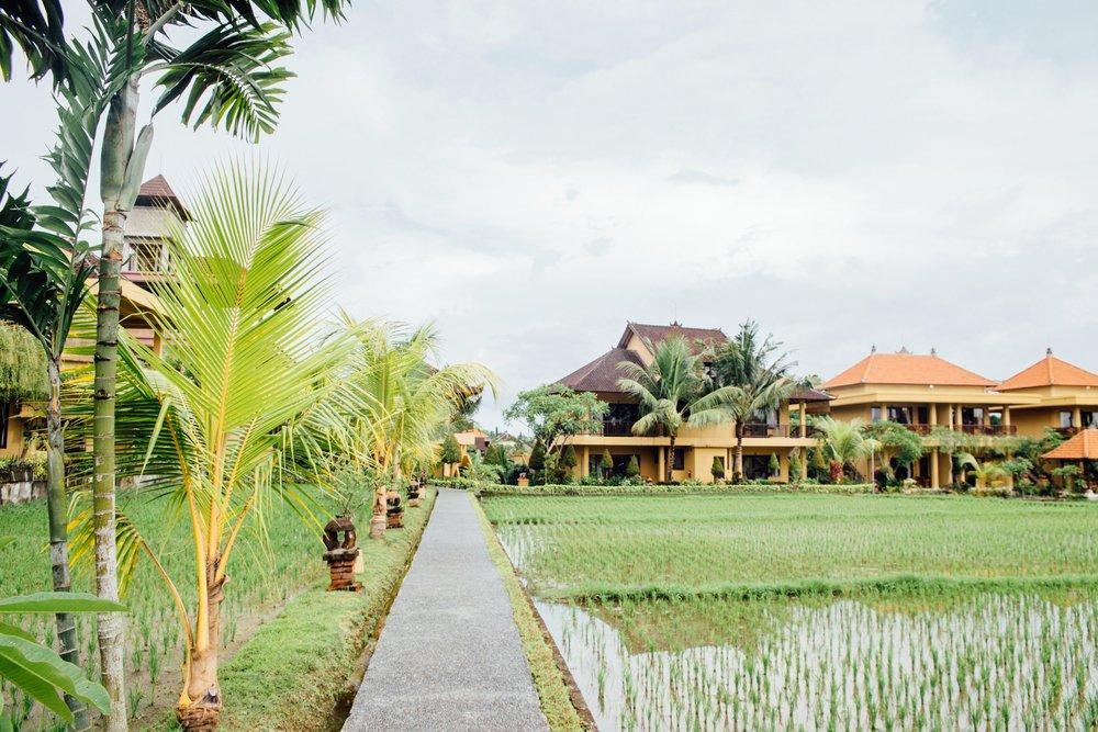 Bali - 21.11.2016
