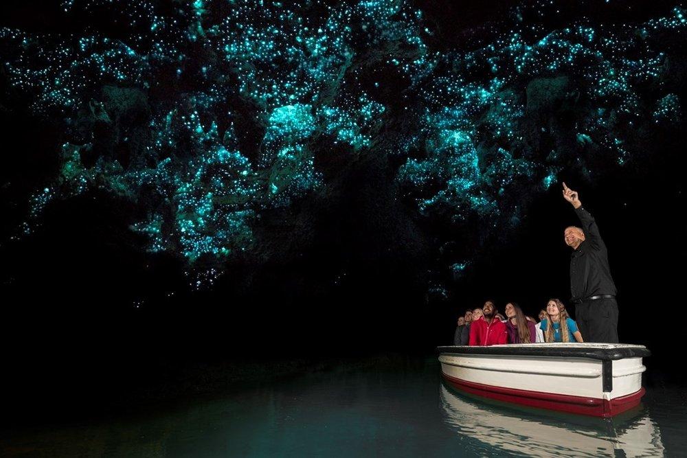 Glowworms in boat.jpg