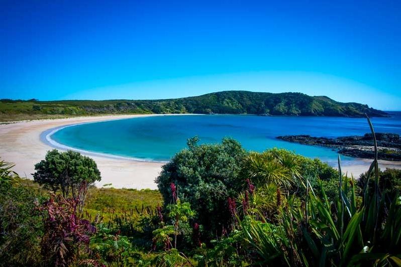 Maitai-Bay-Karikari-Peninsula-THUMBNAIL.jpg
