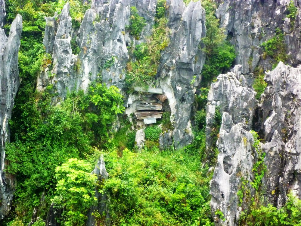 The gravity deifying hanging coffins adorn the limestone cliffs that surround Sagada...