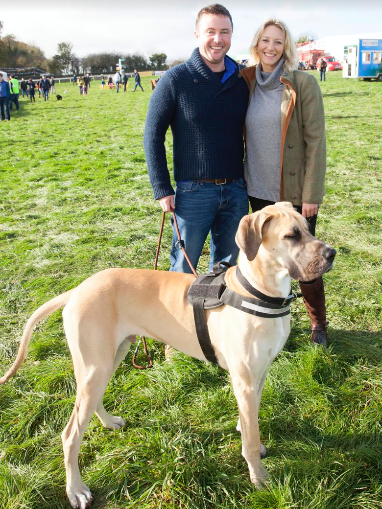 The Overall Best in Show dog show class was won by Rosco, the great Dane with prizes sponsored by Equipet.