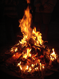 200px-Campfire_Pinecone.png
