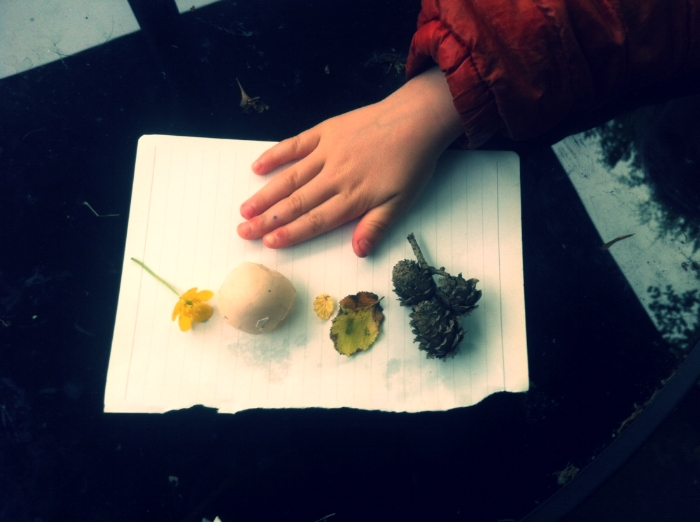 Hand, buttercup, egg shell, leaf, pinecone.
