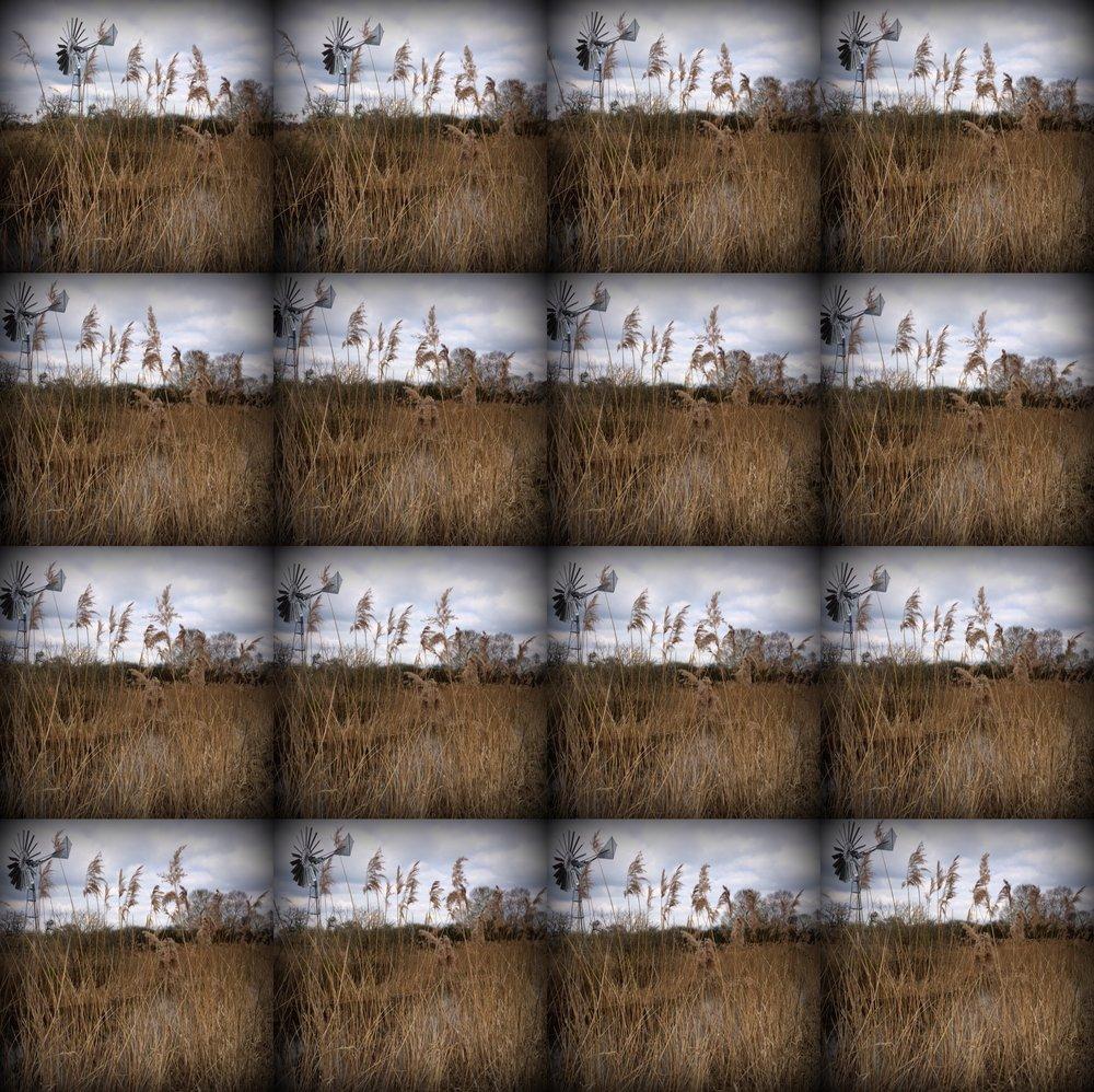 Wicken - from 1000 Stop Frames