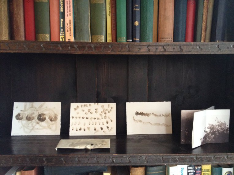 Painting made with Fenland soil and water , on Carly Butler's shelf.
