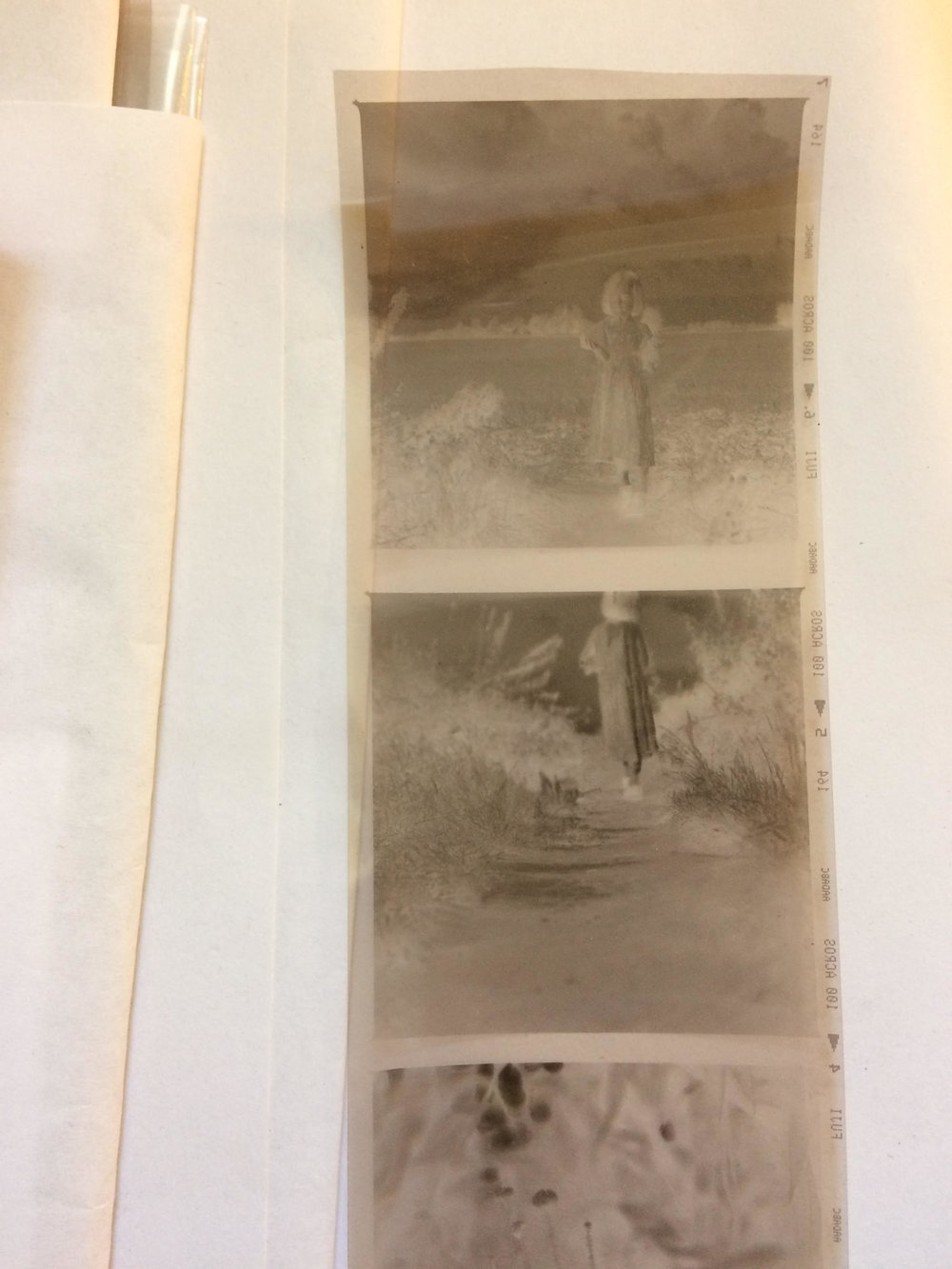 Cafenol negatives of Fordham pathways.  Gudrun Filipska - Carly Butler.