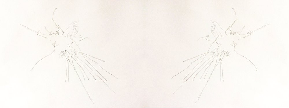 Mosquito Uplift Vectors . Pencil on paper - from images genenerated by researchers from Oxford Universities department of Zoology (Animal Flight group) using a combination of high speed filming and digital modelling.