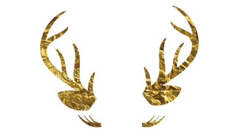 Doe Eyes Golden Antlers