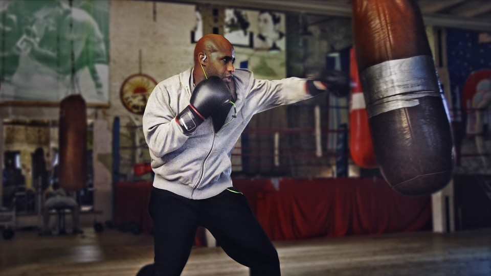boxer-ohnelogo-960x480.jpg