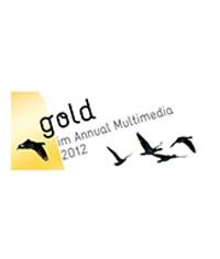Annual Multimedia Award 2012   Projekt:  Dina Foxx  Kategorie: Event, Game und Installation Kunde: ZDF Jahr: 2012