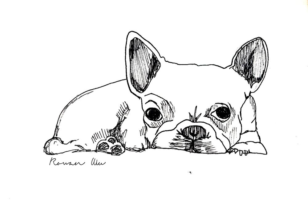 French Bulldog copy.jpg