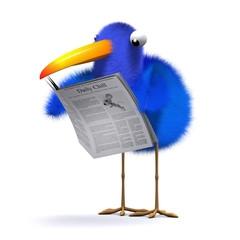 birdnews.jpg