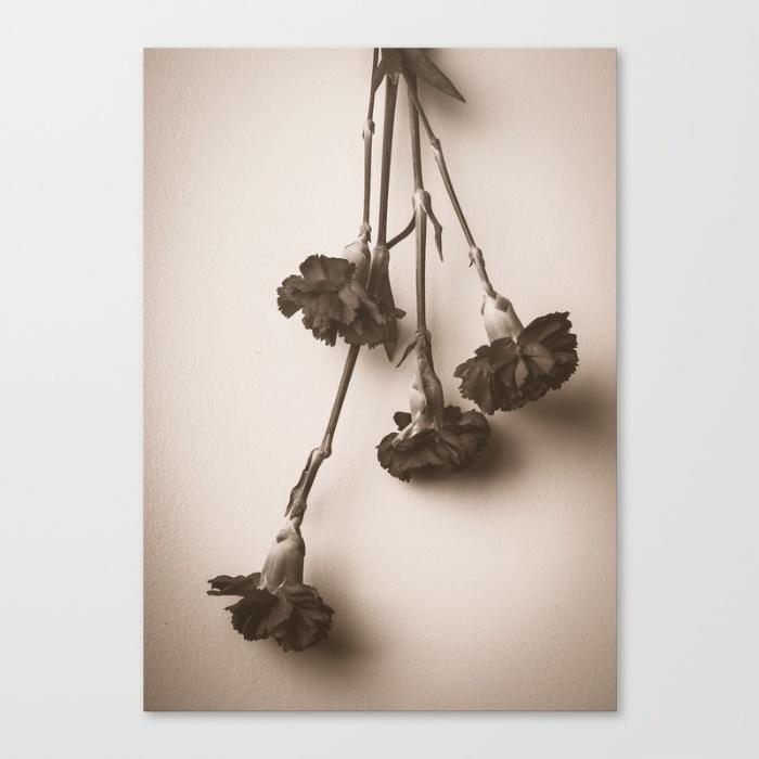 carnation-canvas.jpg