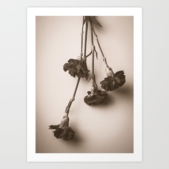 carnation-prints.jpg