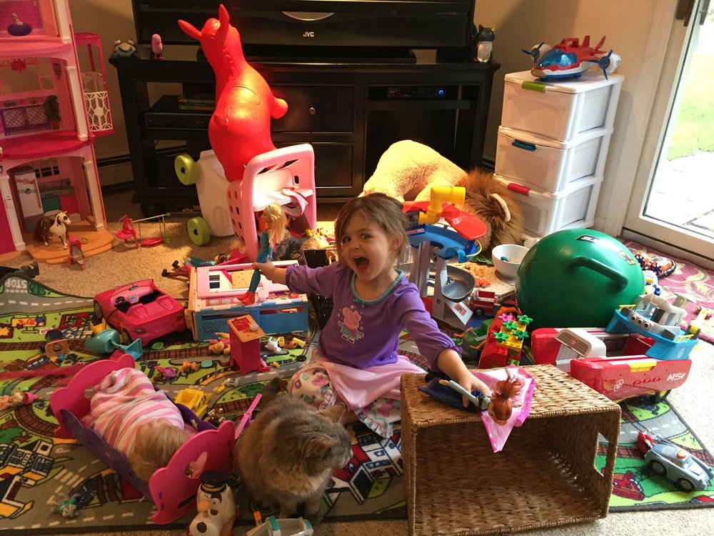 Real Image from a Professional Organizer's playroom