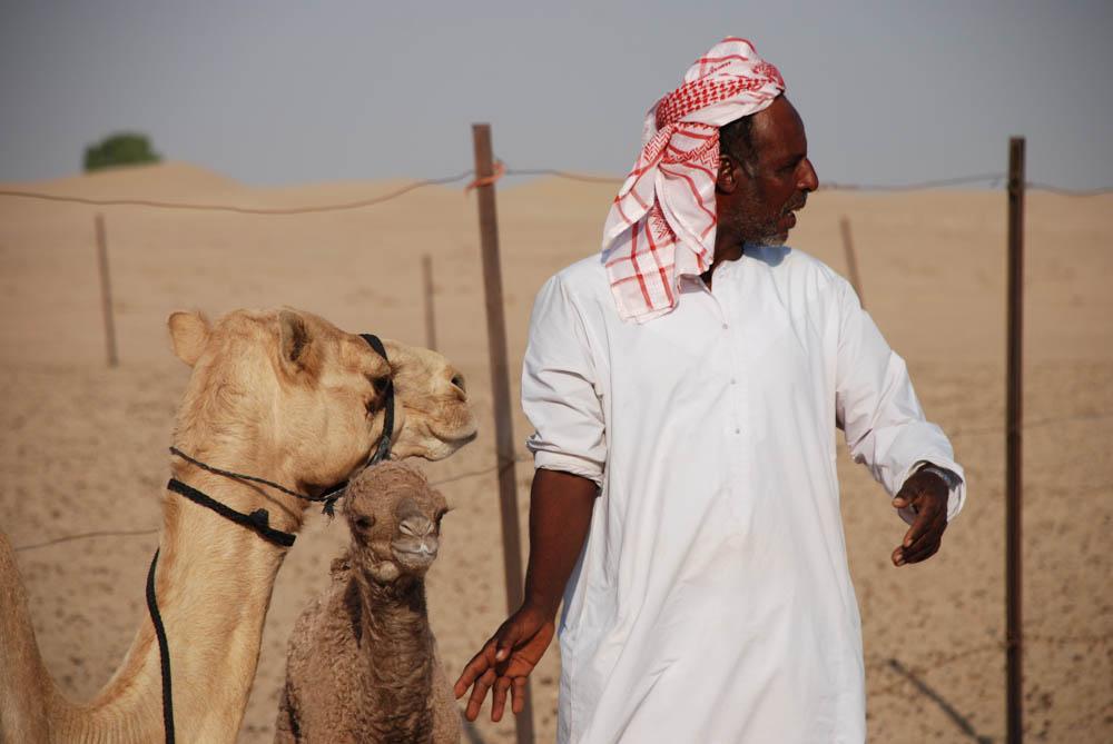 Dubai 068.jpg