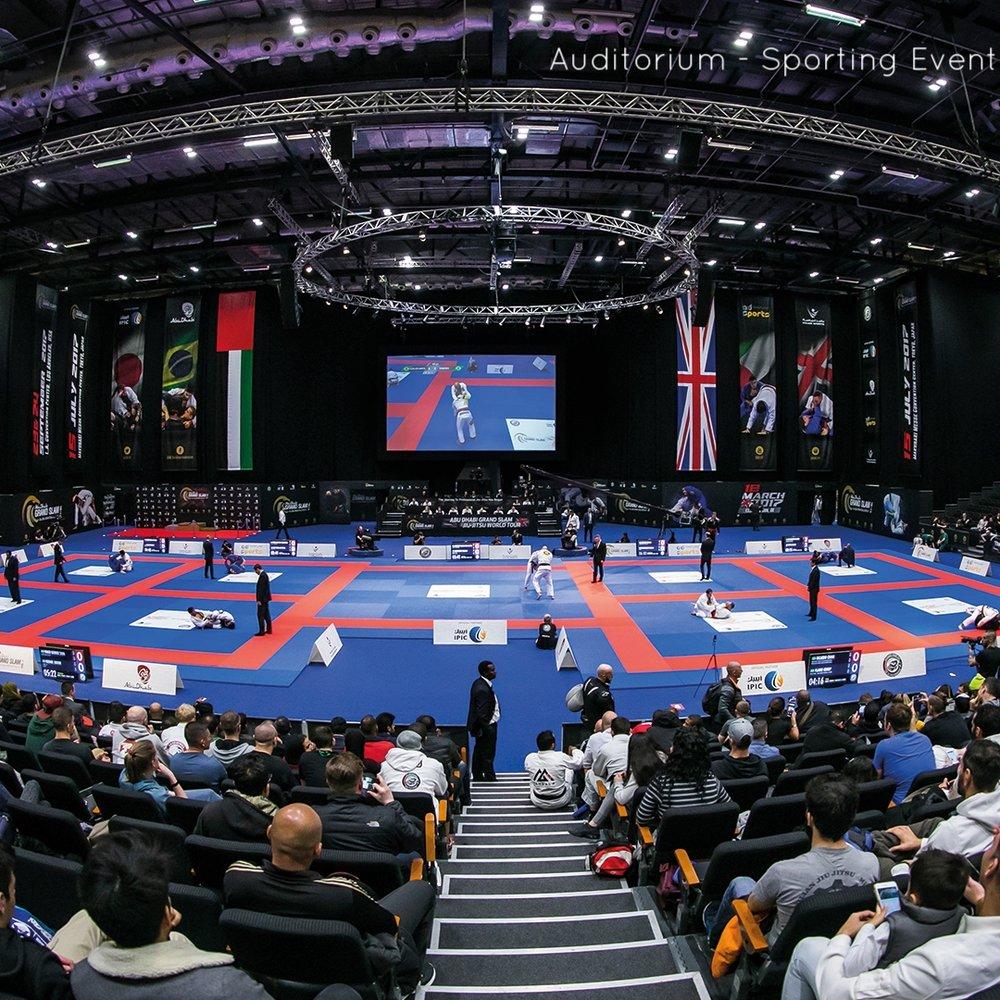 Auditorium - Sporting eventresized.jpg