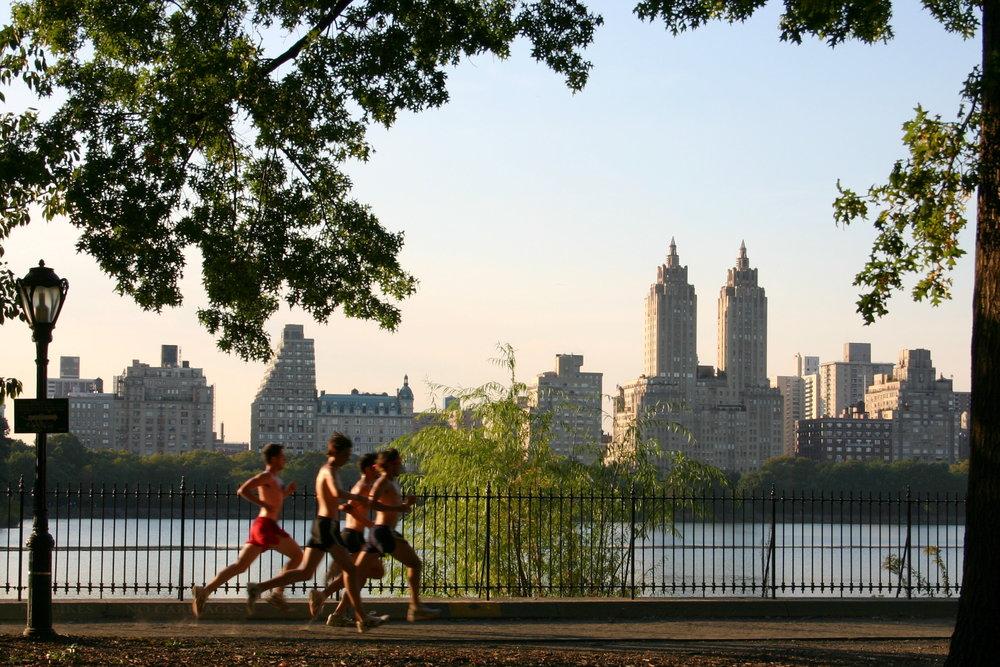 Central_Park_jogging.jpg