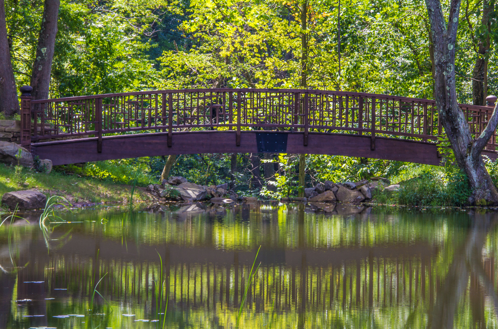 Landscape Photography, Outdoor Photography, Nature Photography, Pittsburgh, Pittsburgh Botanic Garden, Pittsburgh Botanic Garden Photography, Pittsburgh Botanic Garden Photographer, Pittsburgh Nature Photography, Pittsburgh Landscape Photography, Pittsburgh Outdoor Photography, Pittsburgh Photographer, Pittsburgh Nature Photographer, Pittsburgh Outdoor Photographer, Pittsburgh Landscape Photographer, Bridge Photography, Bridge and Water Reflection