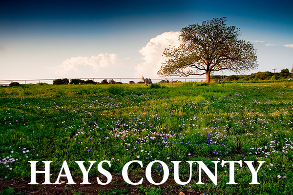 hays county updated.jpg