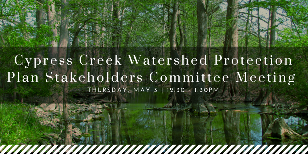 Cypress Creek Watershed Protection Plan Stakeholders Committee Meeting.png