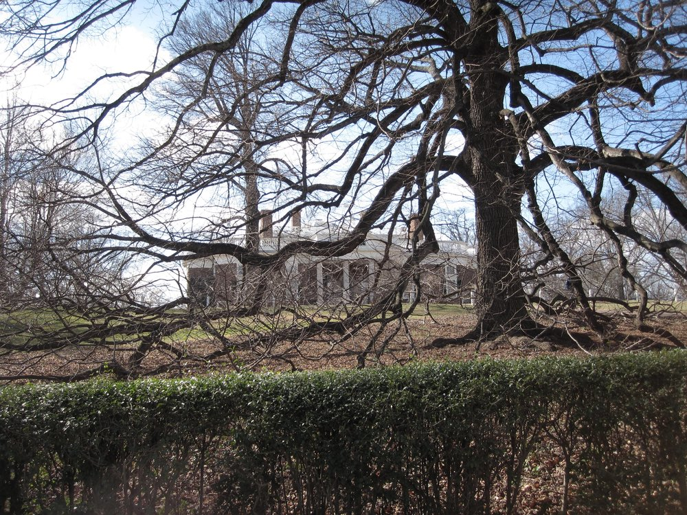 Monticello in Winter